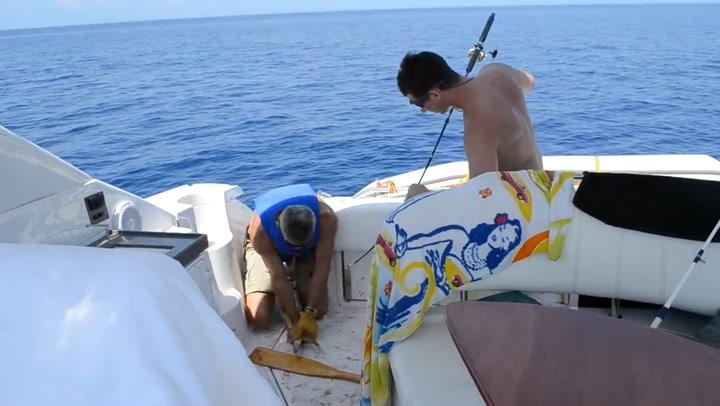 Klønete familie fikk fisk – da startet kaoset