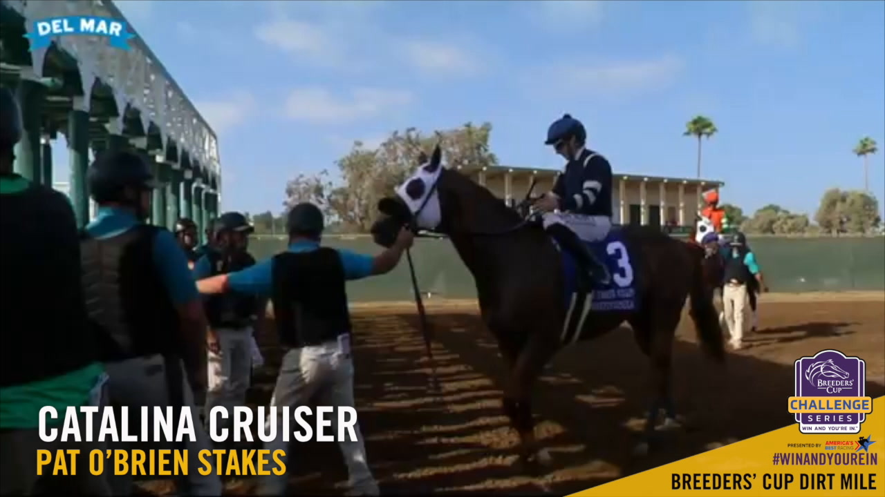 The Breeders Cup Challenge Breeders Cup