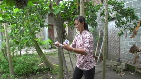 Esperanza para contener el dengue