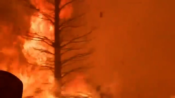 Windy Fire engulfs roads in Sequoia National Forest