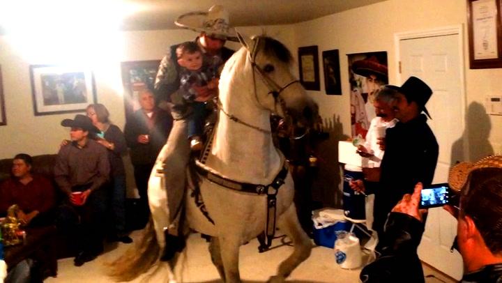 De feiret 50-årsdagen med dansende hest i stua