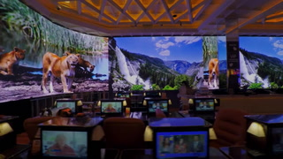 110ft Sportsbook Direct View LED Videowall with Samsung