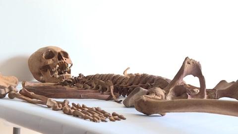 Los restos de una mujer que vivió hace 600 años maravillan a arqueólogos en Perú