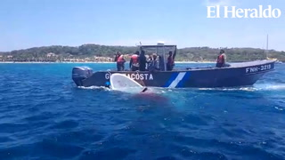 Lancha con turistas extranjeros a bordo choca con arrecifes y se hunde