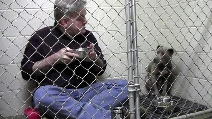Veterinær tok lunsjen i hundeburet