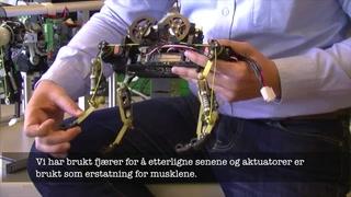 Endelig har forskerne kommet med en robot som beveger seg helt naturlig