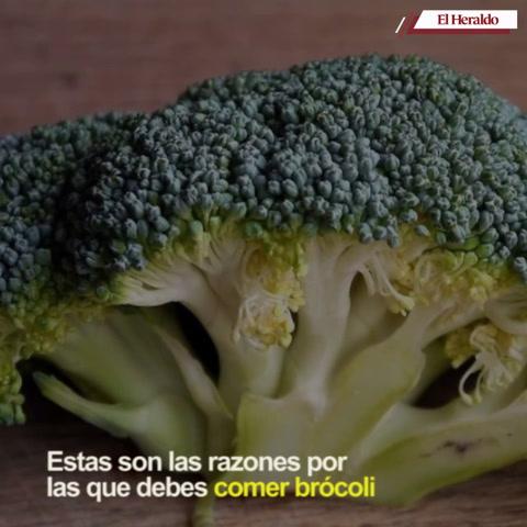 Estas son las razones por las que debes consumir brócoli