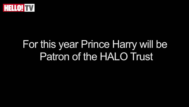 Prince Harry becomes Patron of the HALO Trust
