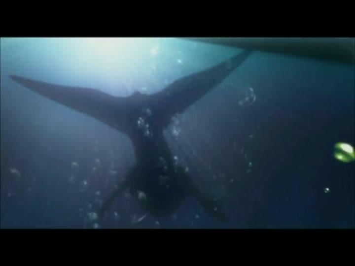 Trailer de la pelicula El Luchador