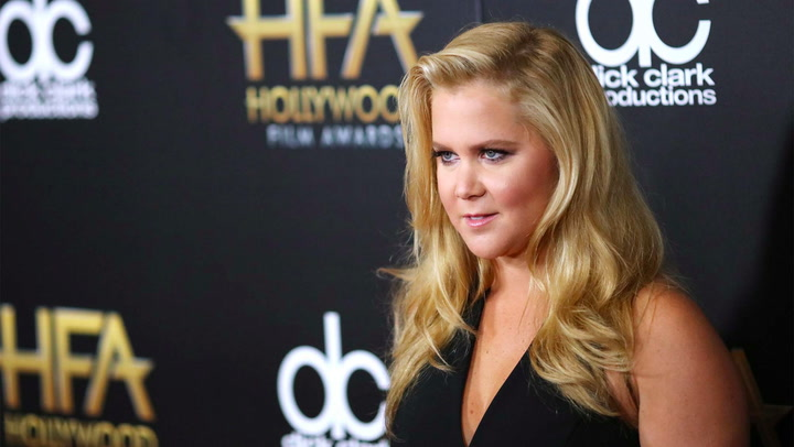 Comedian Amy Schumer's Real Estate Troubles Are No Joke