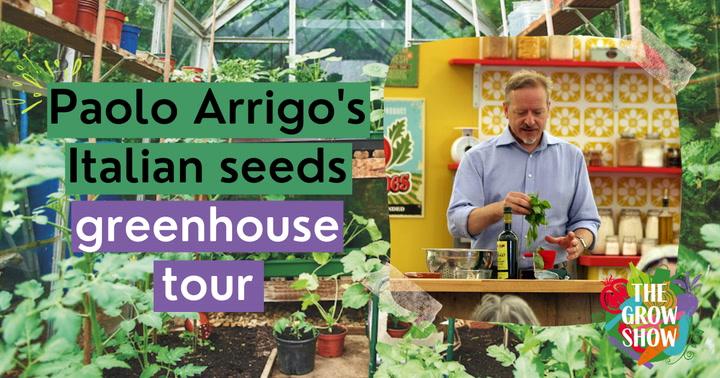 Paolo Arrigo's Italian seeds greenhouse tour
