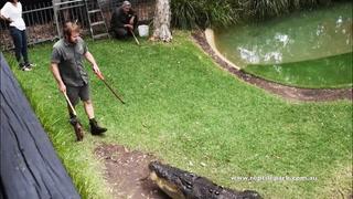 Inviterer kjæresten til å mate krokodillen. Hun aner ingenting om hva som skal skje