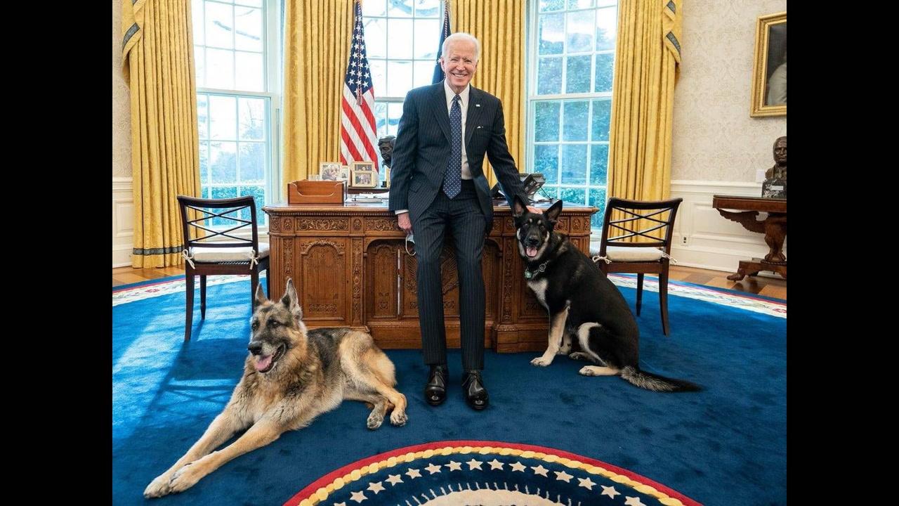 <em>L'ABC de la politique américaine #24</em>: les animaux de compagnies à la Maison-Blanche [VIDÉO]