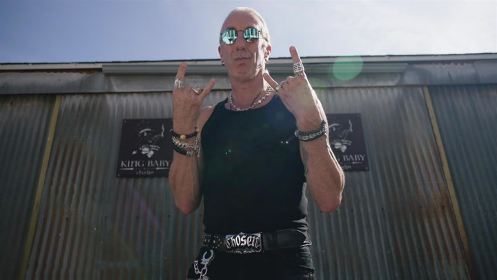 Dee Snider's Rock Star Aesthetic: My Style