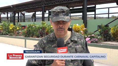 Garantizan seguridad durante carnaval capitalino