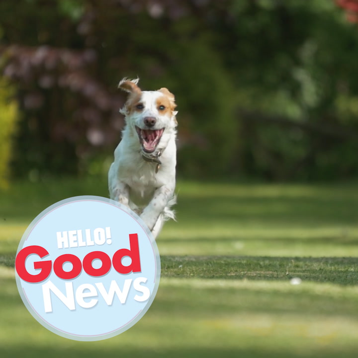 Toff's Hello To Good News - Episode 3