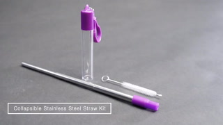 Collapsable Stainless Steel Straw Kit