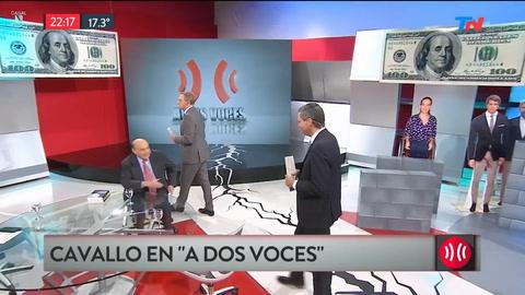 Cavallo desmintió encuentro con Macri pero dijo que les envió su libro