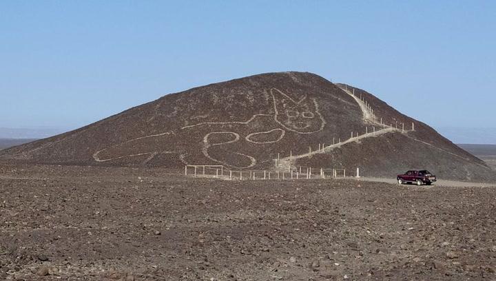 Un gato de 37 metros: el sorprendente hallazgo en la Pampa de Nazca, Perú