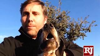 Pepe the truffle-hunting dog