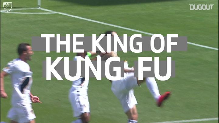 Zlatan Ibrahimović The King Of Kung Fu