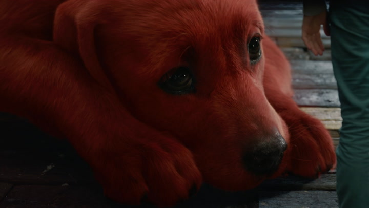 'Clifford the Big Red Dog' Trailer 2