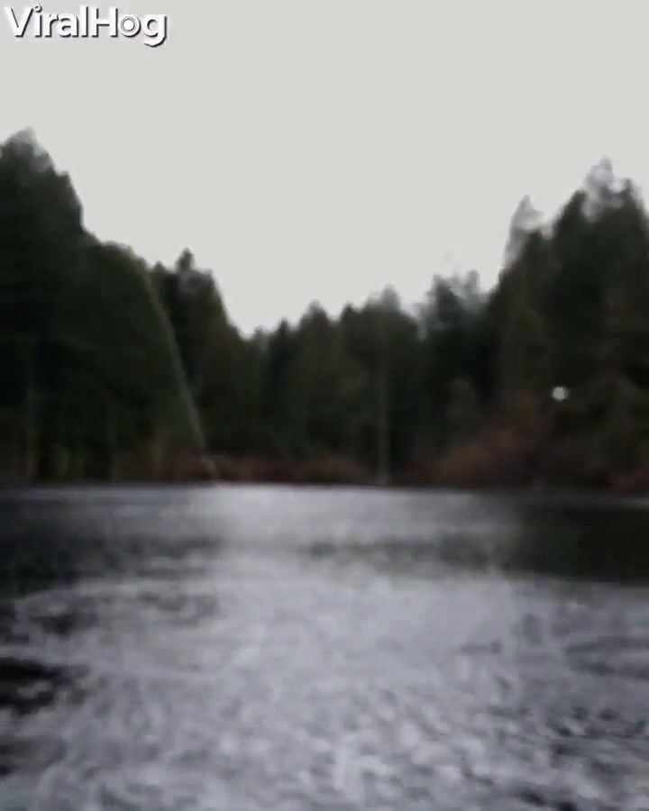 Fisher Spends All Day Fly-Fishing And Then An Eagle Just Swoops Right In To Steal His Catch