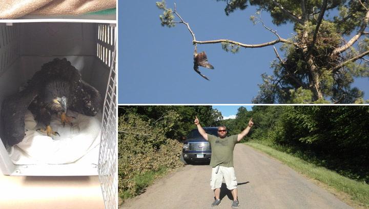 Jason skjøt mot ørnungen – men bare for å hjelpe