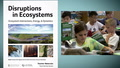 Ecosystems: An NGSS-Designed Unit