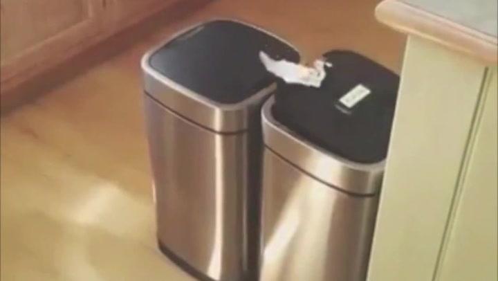 Hysterisk latteranfall da søppeldunkene åpner hverandre