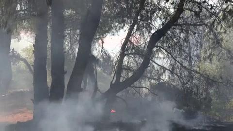 Un incendio forestal causa daños materiales cerca de Atenas