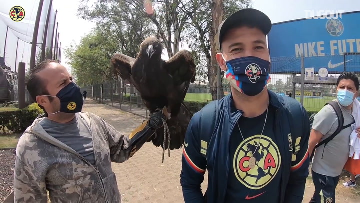 América greet their iconic eagle before traveling to Tijuana