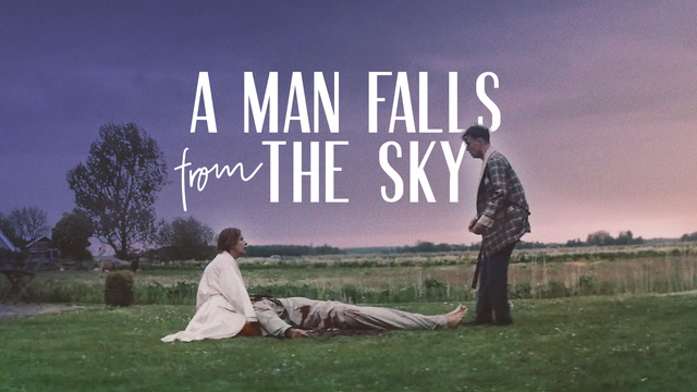 A Man Falls From The Sky
