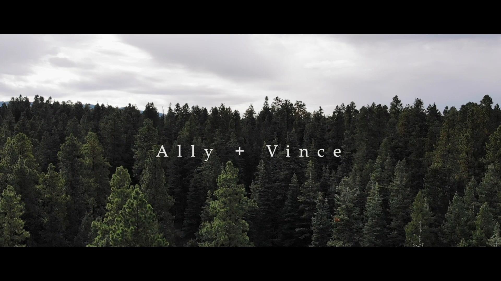 Ally + Vince | Durango, Colorado | Silverpick Lodge