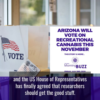 ARIZONA WILL VOTE ON RECREATIONAL CANNABIS THIS NOVEMBER | TRICHOMES Morning Buzz