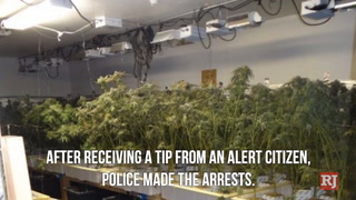 Boulder City pot bust