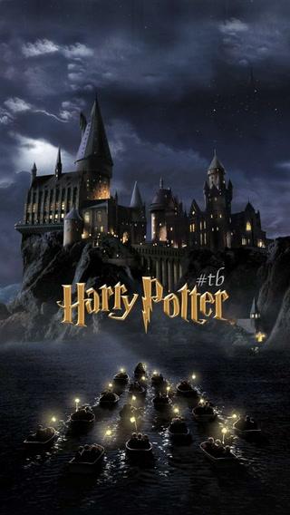 Harry Potter'a son nokta