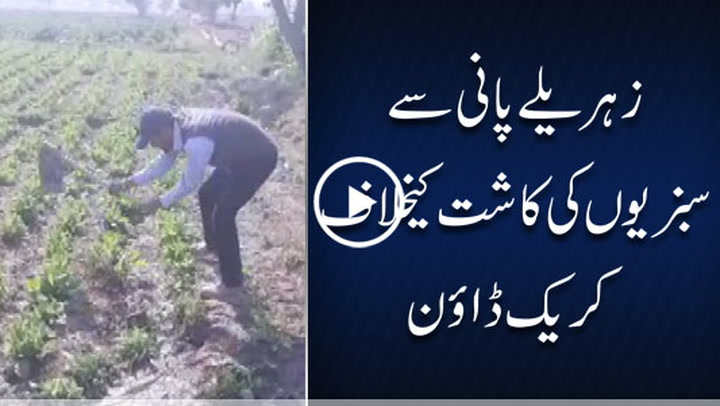 Crackdown against vegetable growers in Punjab