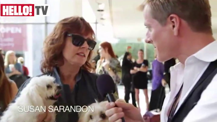 Meet Rigby and Miss Penny: Susan Sarandon\'s fashionable pooches