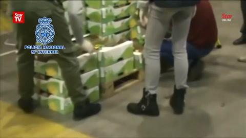 Disfrazaron de ananás casi 800 kilos de cocaína