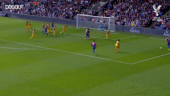 Wilfried Zaha's best goals vs Brighton & Hove Albion
