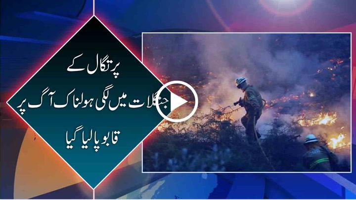 Portugals Deadliest Fire Extinguished