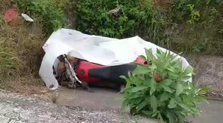 Joven motociclista pierde la vida en accidente en carretera al sur
