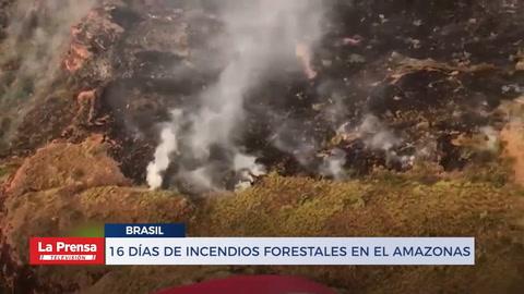 16 días de incendios forestales en el Amazonas