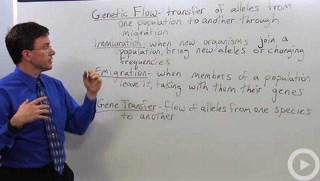 Genetic Flow