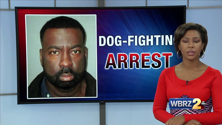 Convicted dogfighter arrested for the third time