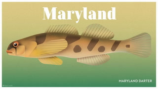 Endangered wildlife in every US state