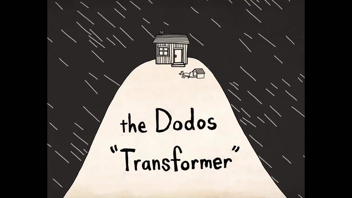 "Shows: Music Video Premiere: The Dodos ""Transformer"" Exclusive"