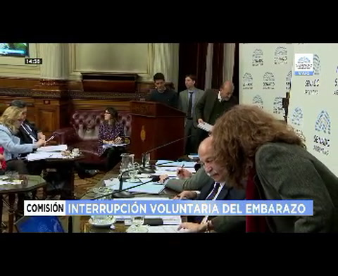 Caruana defendió la legalización del aborto en el Senado nacional