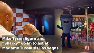 Mike Tyson Shark Week Madame Tussauds – VIDEO